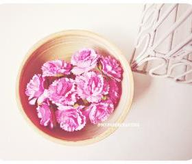 10 Carnation paper flower Hibiscus / pack